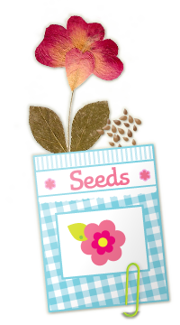 Pressed flower and seed pack