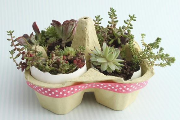 Mini Egg Box Garden
