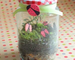 Make a Mossy Terrarium